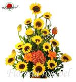 Arreglo Floral Felicidades 01