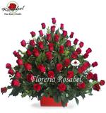 50 Rosas Rojas Llenas de Amor Cdo 15