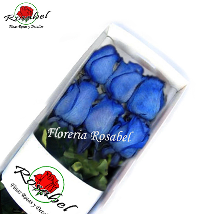Caja con 6 Rosas Azules