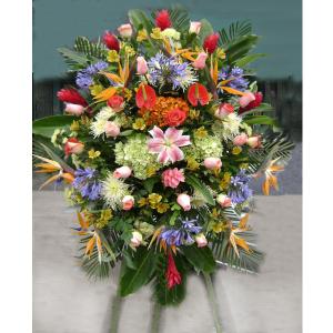 Flores de Inauguración IG 03