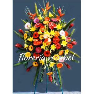 Flores de Inauguración IG 01