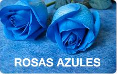 Rosas Azules lima peru