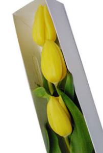 Caja de 3 tulipanes amarillos