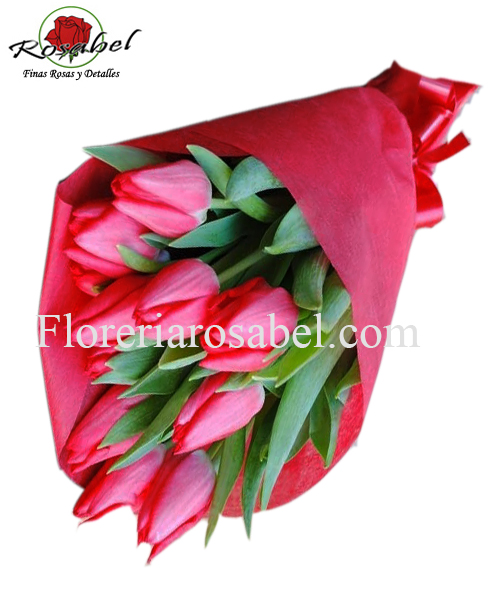 Sending tulip bouquet to lime turkey, delivery tulips, bouquet of tulips