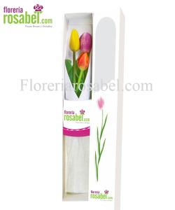 Caja de 3 tulipanes de colores, caja con tres tulipanes, caja  con 3 tulipanes, caja con 3 tulipanes rosabel