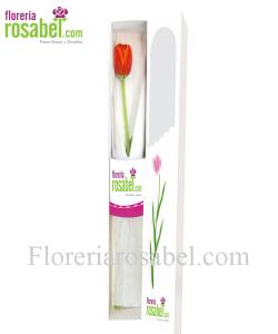 caja de 1 tulipan