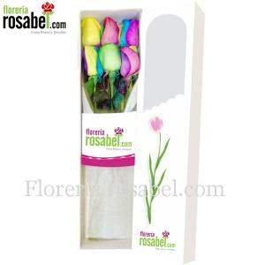 Caja de 6 rosas multicolor