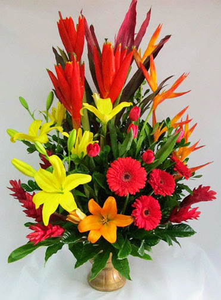 Flores para Inauguración Aniversario B1