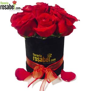 Box de  Rosas rojas Delivery