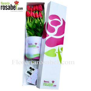 caja de 10 tulipanes rojos