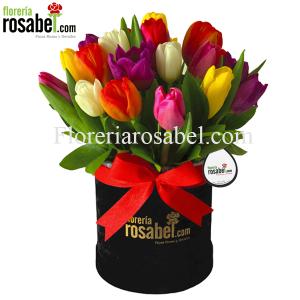 Caja, box, Negra con 20 Tulipanes de Colores